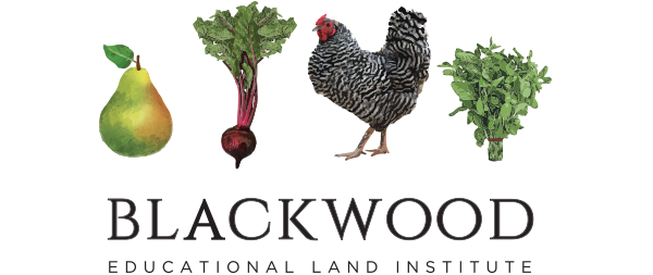 Blackwood's Summer Nature Camp @ Blackwood Educational Land Institute | Hempstead | Texas | United States